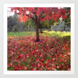 Oil crayon illustration of a red maple tree in the Boston Public Garden Art Print