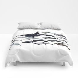 Delphinidae: Dolphin family Comforters