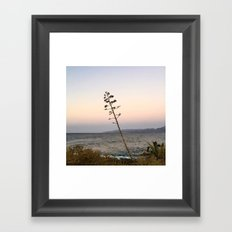 portrait of a tree no.2 Framed Art Print