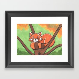 Cute Red panda Framed Art Print