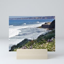 La Jolla Beauty by Reay of Light Photography Mini Art Print