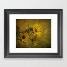 Let the Sun Shine Framed Art Print
