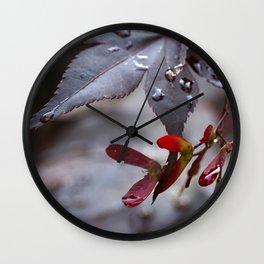 Japanese Maple Seeds II Wall Clock