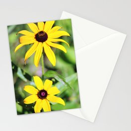 Brown Eyed Susan in Horicon Marsh in Wisconsin Stationery Cards