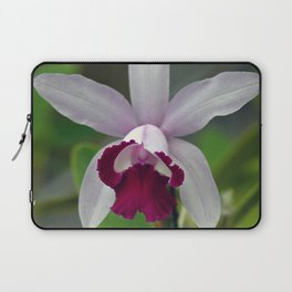 Cattleya Orchid (The Corsage Orchid) Laptop Sleeve