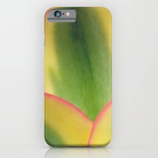 Stained Glass iPhone 6s Slim Case