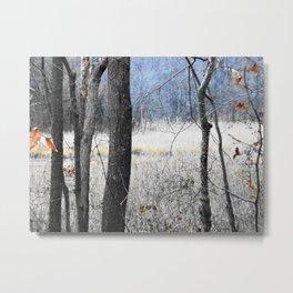 Winter fade Metal Print