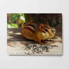 Chippy #3 Metal Print