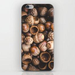Squirrel Harvest iPhone Skin