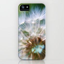 Wish iPhone Case