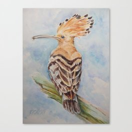 Hoopoe Bird Wildlife watercolor painting Pastel colors decor nature painting Canvas Print