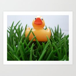 Rubber duckie Art Print