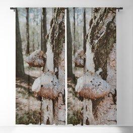 Funky Mushrooms - Sweden Archipelago Art Print Blackout Curtain