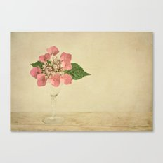 hydrangea vintage Canvas Print