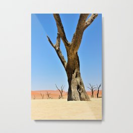 Namibia #society6 #decor #buyart Metal Print