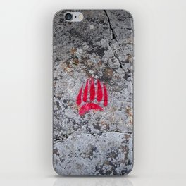Pictograph iPhone Skin