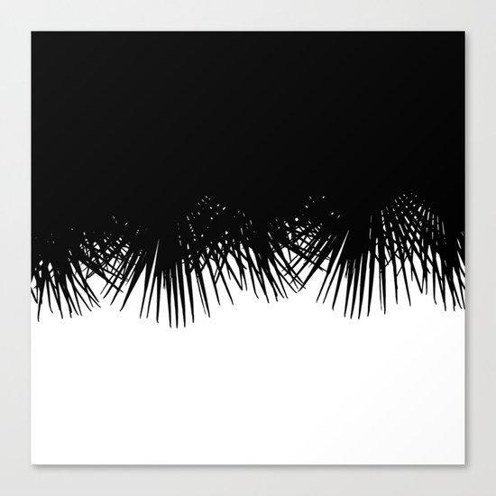 Fan Palm Canvas Print