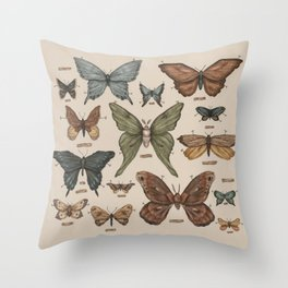 Butterflies and Moth Specimens Throw Pillow