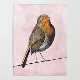 Robin Redbreast, Orange Bird Art Poster