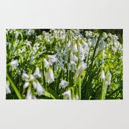Mylor Walk - Three Cornered Leek Rug