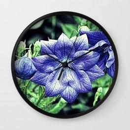 Purple Balloon Flower Floral Art A105 Wall Clock