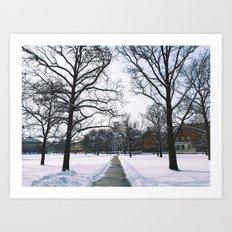 The Frozen Quad Art Print