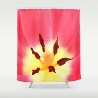 tulip Shower Curtains featuring Tulip by ThePhotoGuyDarren