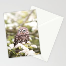 Chouette nature Stationery Cards