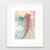 rose Framed Art Prints featuring Jellyfish by Mat Miller