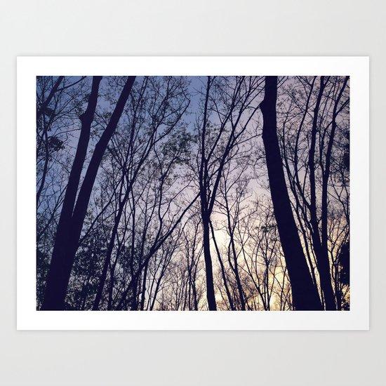 Mystique Forest Art Print