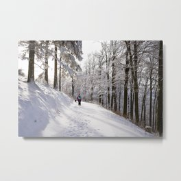 Sunny snow hike landscape Metal Print