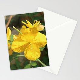 Celandine Flower Closeup Stationery Cards