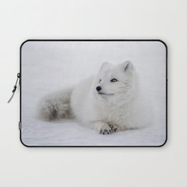 White snow arctic fox Laptop Sleeve