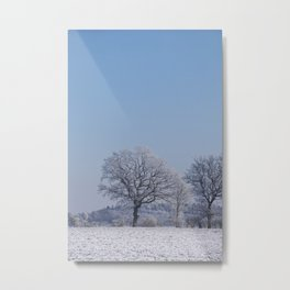 winter walk rural snow landscpape north Germany Metal Print