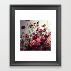 FLOWER 012 Framed Art Print