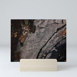 Frozen Stream Bed 1 Mini Art Print