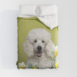 Poodle Dog sitting in field of white daffodils Comforters