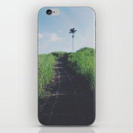 Single tree path iPhone Skin