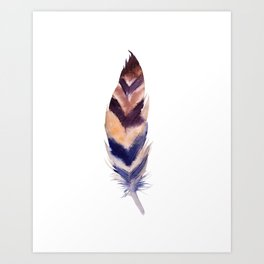feather study 2 Art Print