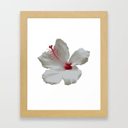 Pure White Hibiscus Tropical Flower Framed Art Print