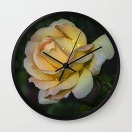 Pretty yellow rose Wall Clock