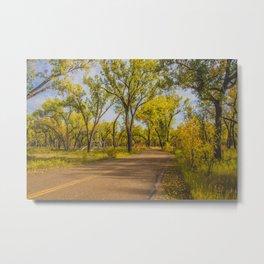 Cottonwoods, Theodore Roosevelt NP, ND 1 Metal Print