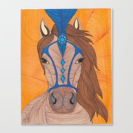Showhorse Canvas Print