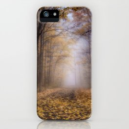 The Enchanted Path iPhone Case