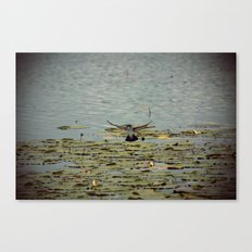 Flying Bird Hovering over Water Color Nature Photography Canvas Print