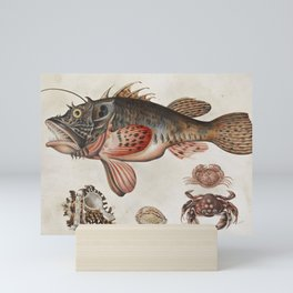 Vintage Fish and Crab Illustration by Maria Sibylla Merian, 1717 Mini Art Print