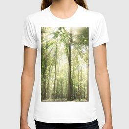 Sun Rays Through Forest Treetops Nature / Botanical Landscape Photograph T-shirt