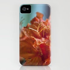 Summertime iPhone (4, 4s) Slim Case