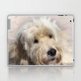 Dog Goldendoodle Golden Doodle Laptop & iPad Skin