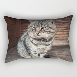 tomcat Rectangular Pillow